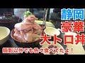 【Shizuoka】 Ultra Luxurious Tuna Rice Bowl!!! & FEEDING SEAGULLS [Use CC]| Kinoshita Yuka