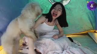милая собака хочет заняться любовью с милой девушкой