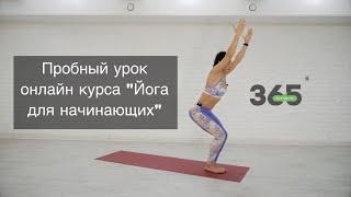 Видео урок - Йога для начинающих