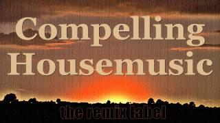Heathous - Defining Definitions (Organic #Techhouse Mix)