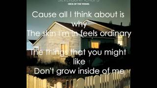 Silversun Pickups - Skin Graph (Lyrics HQ)