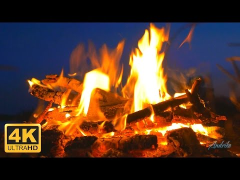 2 HOURS Virtual Fireplace. Campfire by River Relaxing Crackling Fire Sound [4K Ultra/Full HD video]