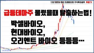 박셀바이오 | 현대바이오| 바이오 테마주 물렸을때 탈출…