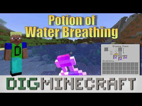 How to make a Potion of Water Breathing (8:00) in Minecraft