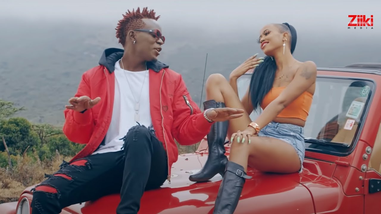 Download WILLY PAUL - COCO ft  AVRIL (Official Video) Send 'Skiza 9049534' to 811