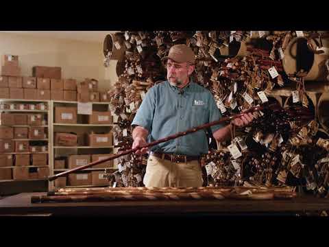 Choosing the Perfect Walking Staff Utility, Design and Looks | Brazos Walking Sticks