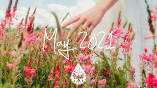 Indie/Pop/Folk Compilation - May 2021 (1½-Hour Playlist)
