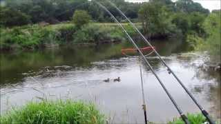 Barbel Fishing on the River Severn - Part 1 - Video 28