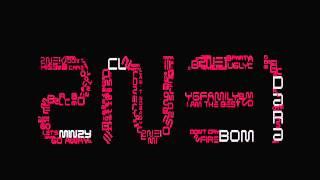 2NE1 (투애니원) Song Compilation