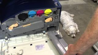 Replace Xerox Workcentre Waste Toner Container