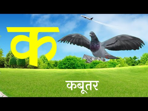 Hindi Alphabet - क से कबूतर। क से ज्ञ तक।हिंदी वर्णमाला सिंखे चित्रों के साथ। Children Song। व्यंजन