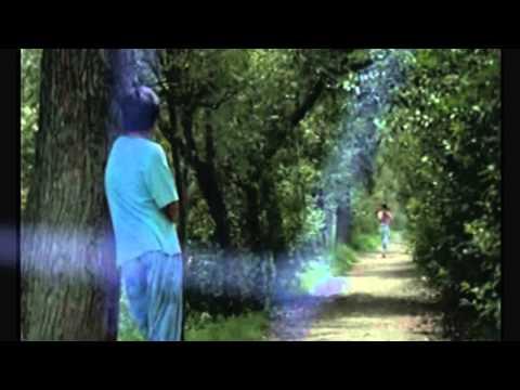 Val Doonican - Elusive Butterfly