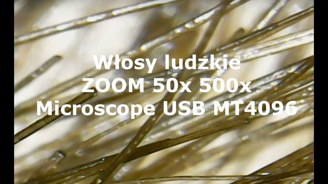 Jak wyglądają włosy w przybliżeniu 50x zoom ? Microscope USB MT4096