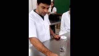 видео vitalius paranaensis