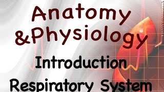 Introduction to the Respiratory System (video 1 of the Respiratory System)
