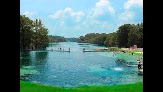 Top 12 Springs in North Florida