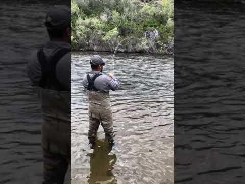 East Walker River Fly Fishing