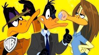 Looney Tunes En Français  Les Différents Visages De Daffy  Wb Kids