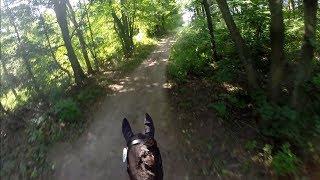Caledon HT 2017 Entry Cross Country Helmet Cam Video
