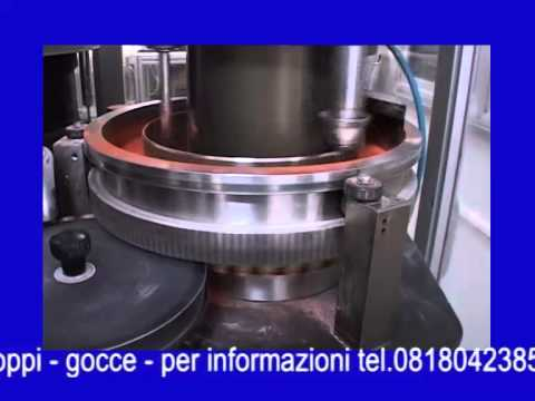 Pharma Food Manufacturing Italia S.r.l