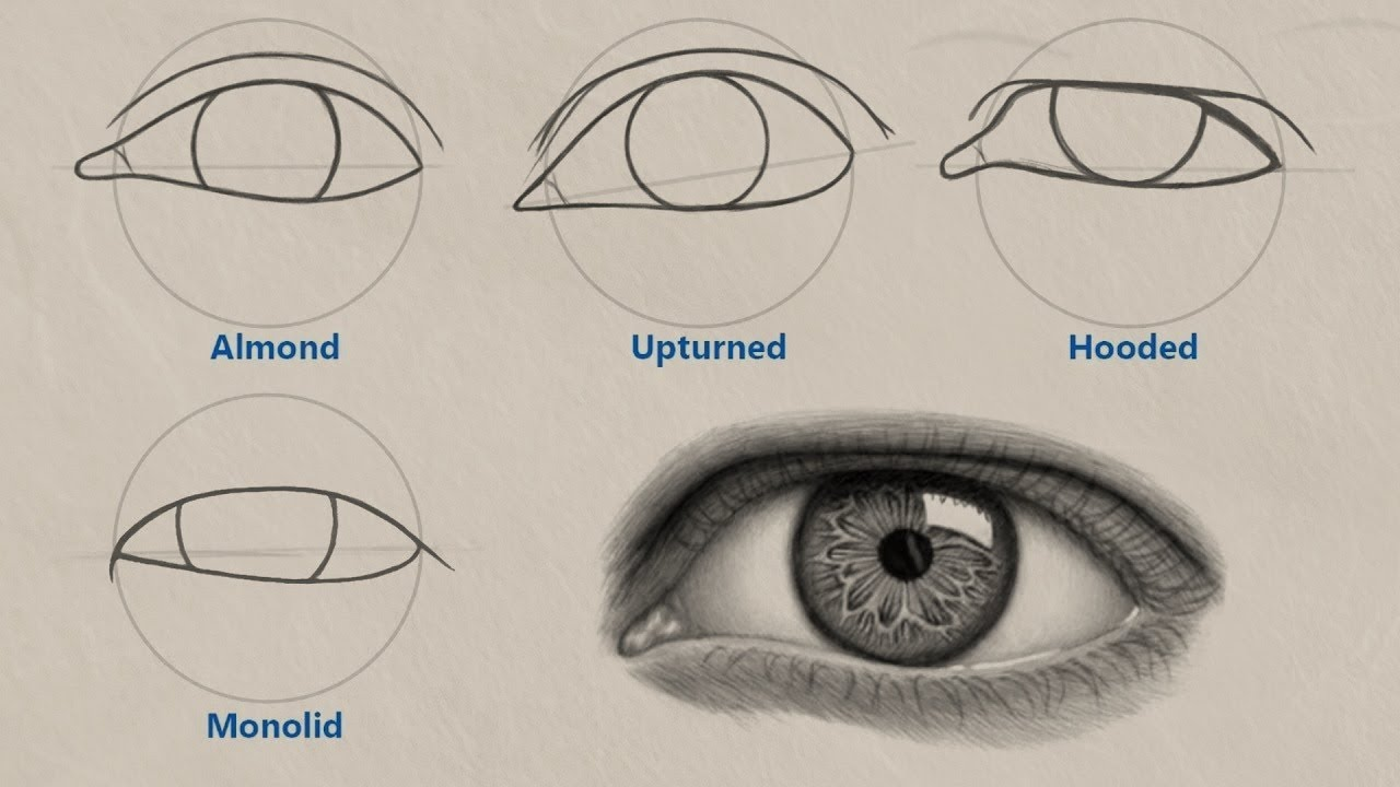 How to draw different eye shapes unique