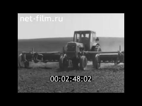 1962г. село Ольшанка колхоз имени Чкалова Аркадакский район Саратовская обл