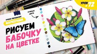 Как нарисовать бабочку на тропическом цветке? / Видео-урок по рисованию маркерами для новичков #72