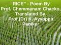 Rice, by Chemmanam Chacko, poem, English,