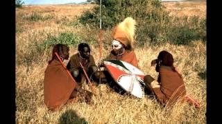 Африканские сказки.  Умный кот