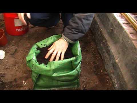How To Grow Potatoes In Potato Planter Bags Youtube
