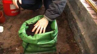 How To Grow Potatoes In Potato Planter Bags
