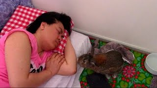 ASMR sleeping with Pinky the bunny Snoring sounds