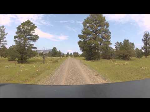 Jeeping in the Gila National Forest