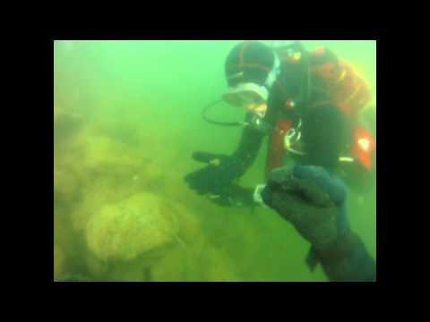 Plongée dans le deuxième petit lac de Sierre