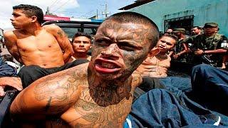 10 Horribles Rituales De Iniciación De Las Pandillas Mas Peligrosas Del Mundo - Los mejores Top 10 thumbnail