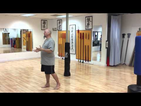 Fire Energy in Push Hands  Stephen Watson