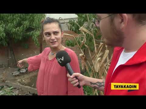 KARIŞ KARIŞ EDİRNE TAYAKADIN'DA