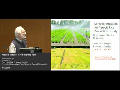 John Duxbury - Arsenic in Rice - From Field to Fork