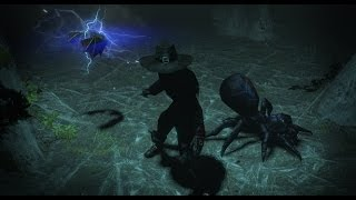Path of Exile - Multipet Preview Video