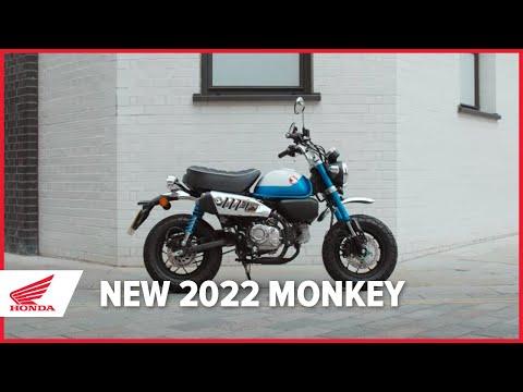 New 2022 Honda Monkey