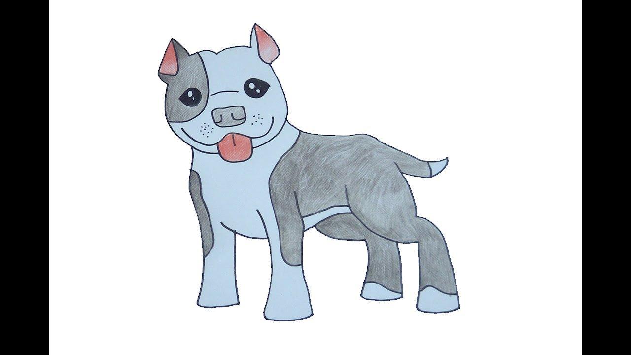 สอนวาดรูป พิทบูล How To Draw Cute Pitbull Cartoon Easy For