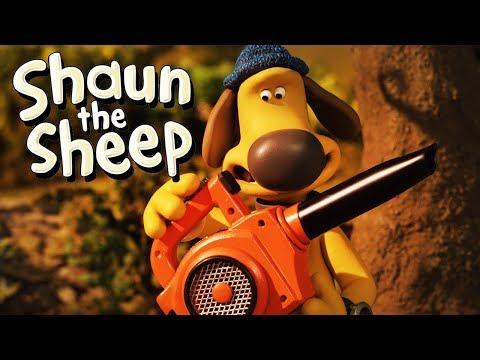 Persoalan Tajam [A Prickly Problem] | Shaun the Sheep | Full Episode | Funny Cartoons For Kids