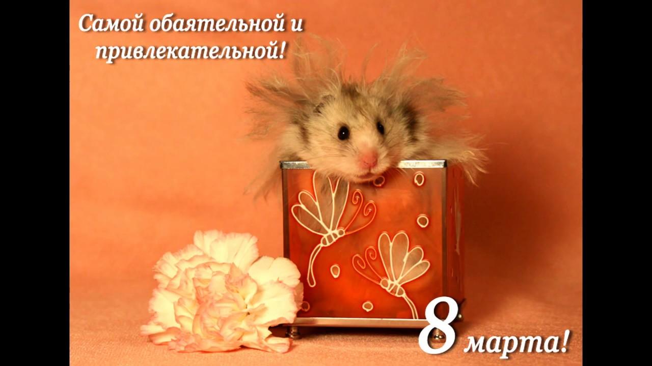 Приколы поздравления с 8 марта открытки