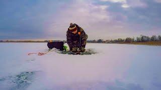 Поставил Жерлицы в затоне Рыбалка на жерлицы 2021 р Здвиж Гавронщинское водохранилище