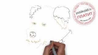 Нарисованные собаки картинки Как нарисовать карадашом морду собаки