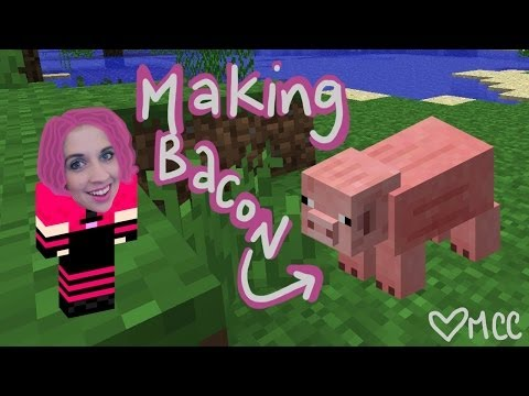 How to Make a Minecraft Pig: An Animation