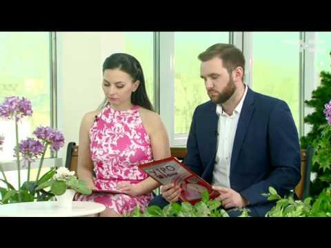 Россияне погрязли в кредитах - «Утро с Вами» 10.03.2017