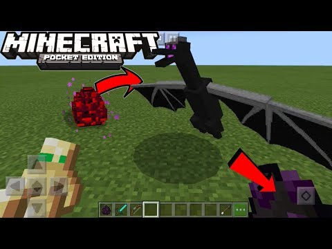 HOW TO SPAWN BABY ENDER DRAGON In...