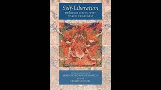 Self Liberation through seeing with Naked Awareness - Padmasambhava - Dzogchen