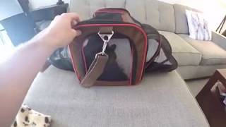 PETYELLA Expandable Cat or Small Dog Carrier Review